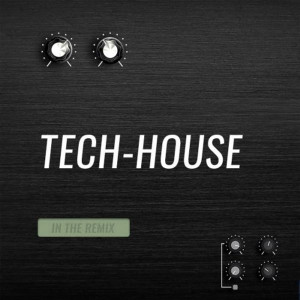 DJ.Ilya.F. tech House Mix.