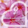 Dj Suveren - Melodic palitra #005