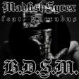 MadfishSyrex - BDSM (feat.Succubus)