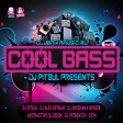 013. Abstractive Illusion - Cool Bass